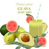 Vetor realístico dos frutos da goiaba e de abacate do batido isolado no fundo branco Foto de Stock Royalty Free