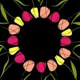 Vetor redondo do fundo do quadro da flor da tulipa Imagem de Stock