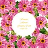 Vetor redondo floral cor-de-rosa do cartão cartão de verão delicado Composição natural fresca da primavera Imagem de Stock Royalty Free