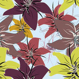 Vetor seamless floral pattern Stock Images