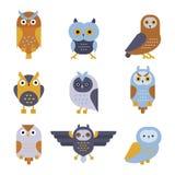 Vetor selvagem dos desenhos animados do pássaro da coruja Foto de Stock