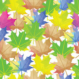 Vetor sem emenda Autumn Leaves Colorful Pattern Folha de plátano isolada Fotos de Stock Royalty Free