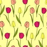 Vetor sem emenda do fundo da flor da tulipa Imagens de Stock