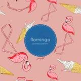Vetor sem emenda do teste padrão do pássaro e do gelado do flamingo Imagem de Stock