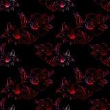 Vetor sem emenda floral do fundo da textura do teste padrão do alstroemeria vermelho e preto Fotos de Stock Royalty Free