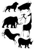 vetor - vários animais africanos Foto de Stock