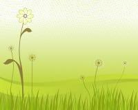 Vetor verde da flor e da grama Ilustração Royalty Free