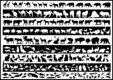 Vetores dos animais Fotografia de Stock
