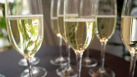 Vetri con champagne, portata lenta della macchina fotografica avanti stock footage