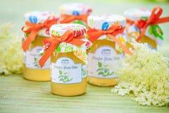 Vetri con la gelatina del fiore di sambuco Immagine Stock Libera da Diritti