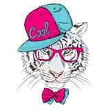 Vetri d'uso della tigre di vettore e un cappuccio hipster royalty illustrazione gratis