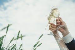 Vetri del champagne di nozze della tenuta dello sposo e della sposa Immagine Stock Libera da Diritti