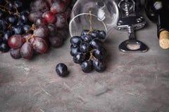 Vetri del vino rosso e fondo orizzontale del fondo dell'uva rossa della bottiglia con vino rosso e lo spazio di vetro della copia Fotografia Stock Libera da Diritti