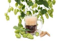 Vetri di birra con i coni di luppolo Fotografie Stock Libere da Diritti