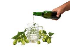 Vetri di birra con i coni di luppolo Fotografie Stock