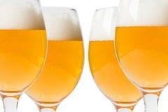 Vetri di birra su un fondo bianco Fotografie Stock Libere da Diritti
