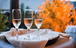Vetri di Champagne Immagine Stock