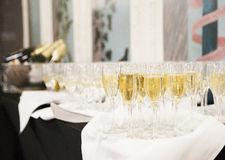 Vetri di Champagne Fotografia Stock