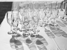 Vetri di Champagne con champagne Immagini Stock Libere da Diritti