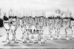Vetri di Champagne con champagne Immagine Stock