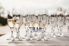 Vetri di Champagne con champagne Fotografia Stock Libera da Diritti