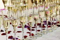 Vetri di champagne con i petali di rosa Immagine Stock