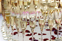 Vetri di champagne con i petali di rosa Fotografie Stock