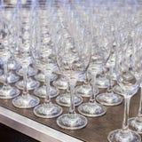 Vetri di Champagne in una riga Immagine Stock