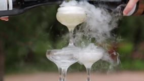 Vetri di fumo del champagne Vetri di Champagne Fumo che Billowing sopra Champagne Flute Servizio di approvvigionamento Scorrevole stock footage