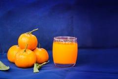 Vetri di succo d'arancia e dei frutti con le foglie secche Fotografie Stock