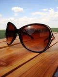 Vetri di Sun Fotografia Stock Libera da Diritti