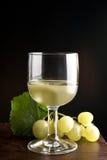 Vetri di vino Fotografia Stock
