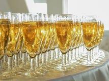 Vetri di vino bianco Fotografie Stock Libere da Diritti