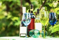 Vetri di vino colorati Immagine Stock Libera da Diritti