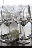 Vetri di vino con il fiore Immagine Stock Libera da Diritti