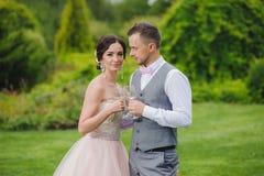 Vetri di vino della holding dello sposo e della sposa Immagini Stock Libere da Diritti