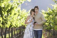 Vetri di vino della tenuta delle coppie in vigna Fotografia Stock Libera da Diritti