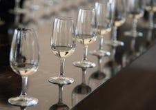 Vetri di vino di cristallo per l'assaggio di vino Fotografia Stock Libera da Diritti