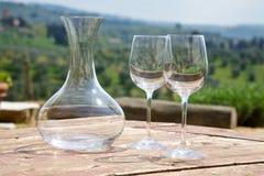 Vetri di vino due e della caraffa Fotografie Stock Libere da Diritti