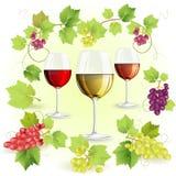 Vetri di vino e dell'uva Fotografie Stock Libere da Diritti