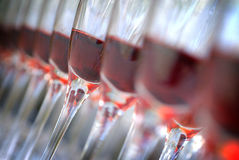 Vetri di vino organizzati nella riga immagini stock
