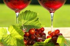 Vetri di vino rosso Immagini Stock