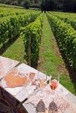 Vetri di vino rosso e bianco Immagini Stock