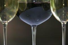 Vetri di vino rosso e bianco. Fotografia Stock