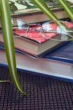 Vetri e libri della lettura Immagine Stock