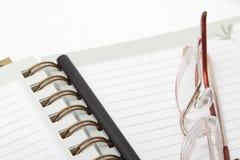 Vetri e una matita su un diario Fotografia Stock Libera da Diritti