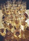 Vetri freschi di Champagne Fotografia Stock
