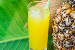 Vetro alto con il succo di frutta tropicale di recente schiacciato con Straw Pineapple Coconut su grande foglia di palma verde su immagine stock