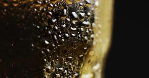 Vetro appannato con birra leggera fredda stock footage