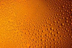 vetro appannato della fine della birra su un fondo luminoso arancio Fotografie Stock